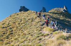Best of Southern Alps Trek (from Christchurch to Queenstown) Tour