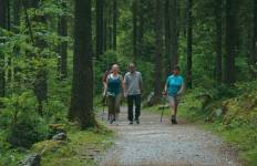 Austrian Lakes Walk Tour