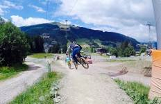 Downhill mountain biking in the French Alps Tour