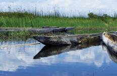 Okavango & Beyond Tour