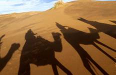Marrakech To Marrakech (9 Days) Souks & Sand Dunes Tour