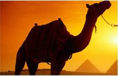 Wonders of the Pharaohs10 Days Tour