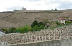 Beaujolais Cycling Tour