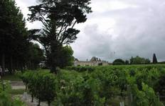 Cycling with Bacchus Tour