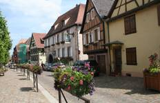 Alsace Intense: The Best and the Excellent Tour