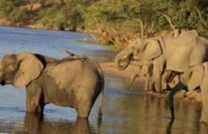 Zanzibar, Victoria Falls Kruger (from Dar es Salaam to Johannesburg) Tour