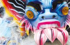 Rio Carnival Tour