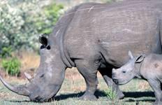 Kenya & Tanzania: The Safari Experience Tour