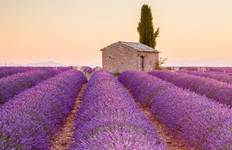 Discover Provence Tour