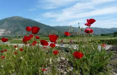 Albania Heritage by Bicycle Tour