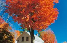 New England\'s Spectacular Fall Foliage Tour