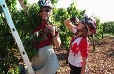Family cycling and cooking trip In Italy Tour