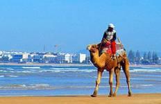 Camels, Kasbahs & Beach - 12 Days Tour