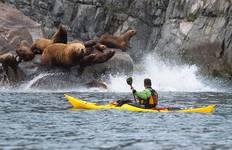 Sea Kayaking in Kamchatka Tour