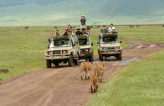 Serengeti and Ngorongoro Crater Tour