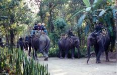 Rafting & Elephant Safari Tour