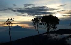 Climbing Kilimanjaro (Lemosho Route) Tour