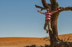 04 Day Sossusvlei & Swakopmund Adventure Safari Tour