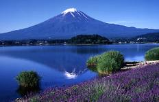 Japan Kanto - 5 days/4 nights Tour