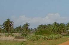 Togo, Ghana and Benin Tour