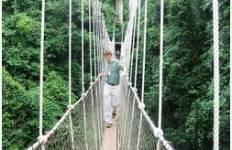 Kakum National Park & Cape Coast/ Elmina Castle Tour Tour