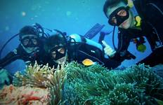 Eye On The Reef - Marine Conservation Program on the Great Barrier Reef Tour