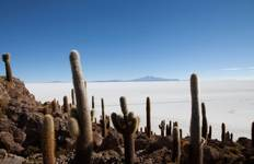 Complete Bolivia Highlights 12D/11N Tour