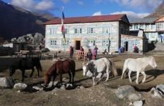 Himalaya Langtang Trek 8D/7N Tour