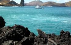 Galapagos Island Hopping Adventure 7D/6N Tour