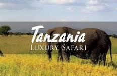 Tanzania Gay Luxury Safari: A Big Five Safari Tour