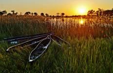 Botswana Wild Parks Tour