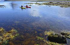 Paddle in the Wild of Hornstrandir Tour