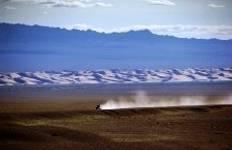 Gobi Desert Short Tour Tour