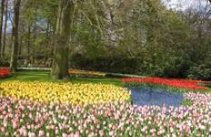 Springtime in Holland (7 destinations) Tour