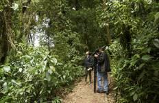 Costa Rica Biosphere Tour