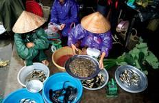 Vietnamease Cooking Class Tour