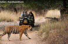 Super Saver Golden Triangle Tour with Ranthambore Tour