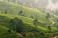 Classic Sri Lanka - Independent Journey Tour