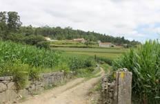 The Portuguese Road - Porto to Santiago Tour