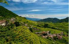 Prosecco Wine Cycle Tour