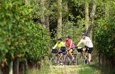 Rioja Biking Tour