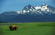 Alaskan Wildlife & Wilderness Tour