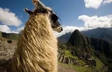 Machu Picchu, Lost Citadel Of The Incas - Day Trip Tour