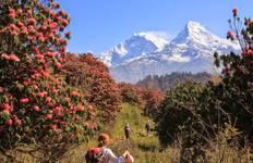 Annapurna Discovery Trek Tour