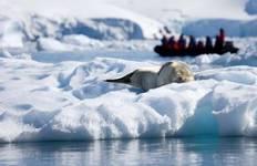 Antarctic Express - Fly the Drake (7 destinations) Tour