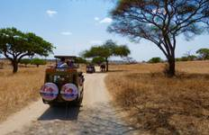 The Big 5 Safari Tour
