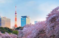 Classic Japan: The Golden Route with Osaka Tour