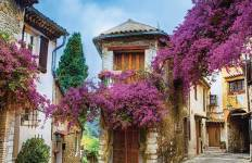 Burgundy & Provence - Lyon to Avignon Tour