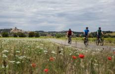 Cycle Provence Tour