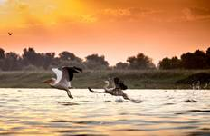 Danube Delta Tour - Visit the largest biodiversity in Europe Tour